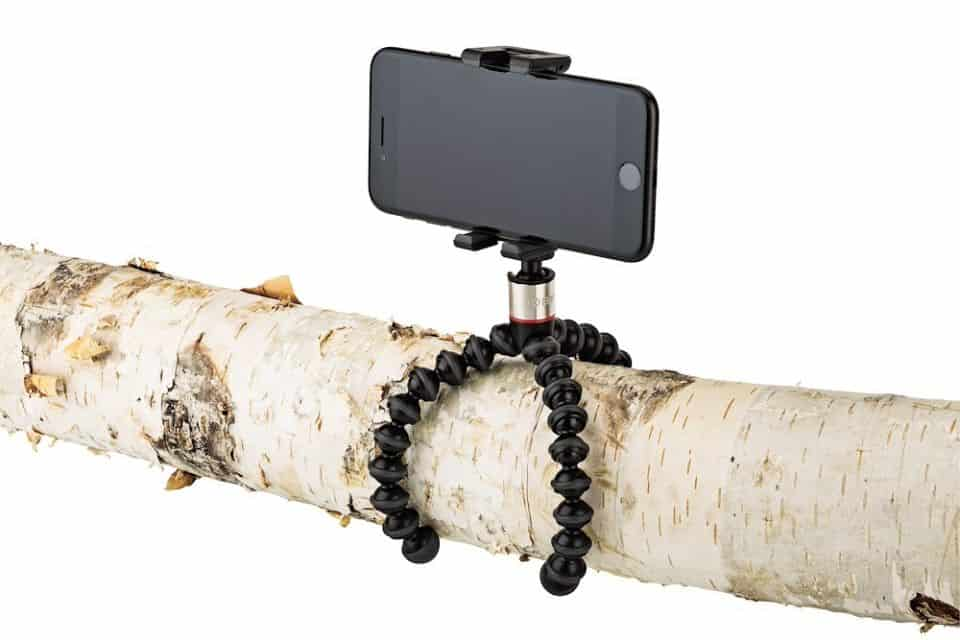Gorillapod Tripod around Branch
