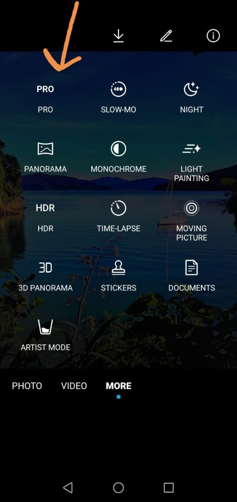 Take Raw images with your phone